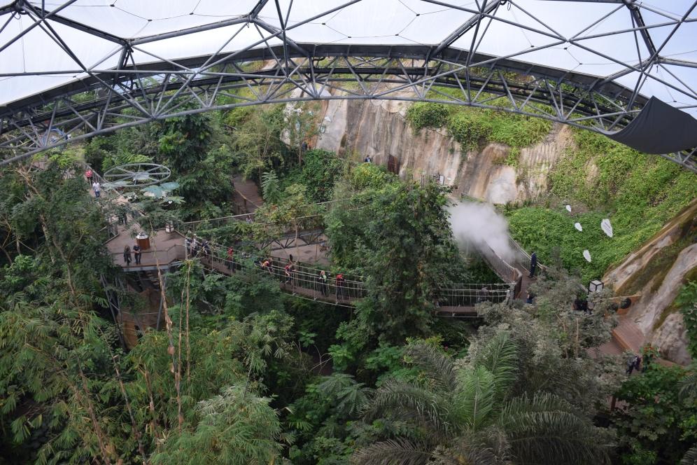 Eden Project Tropical Room 6 Platform View